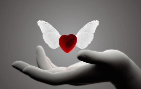 9867-heart-with-wings-1920x1080-digital-art-wallpaper