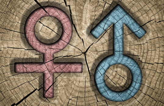 Male and female sex signs on wooden background