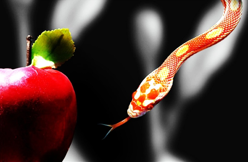 temptation-apple-and-snake